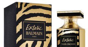 balmain-extatic-tiger_orchid